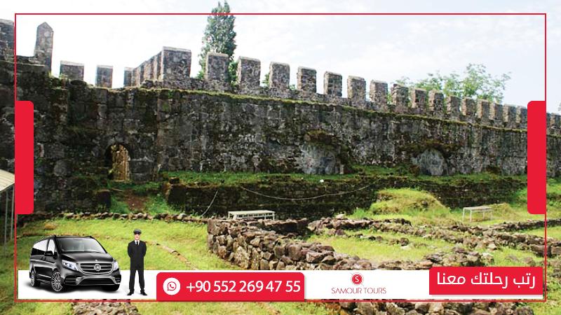 قلعة جونيو ابساروس